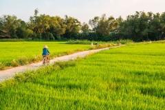 Campagna di Hoi An, Vietnam