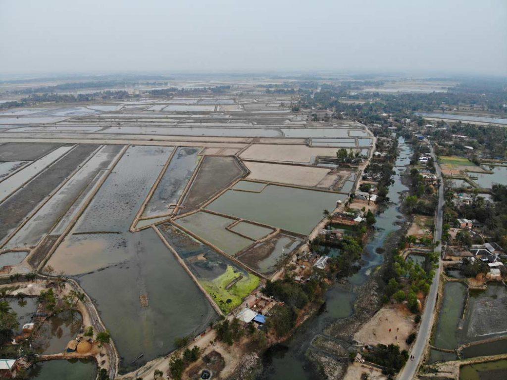 vista aerea dell'area. Dove c'erano risaie ora ci sono allevamenti di gamberi