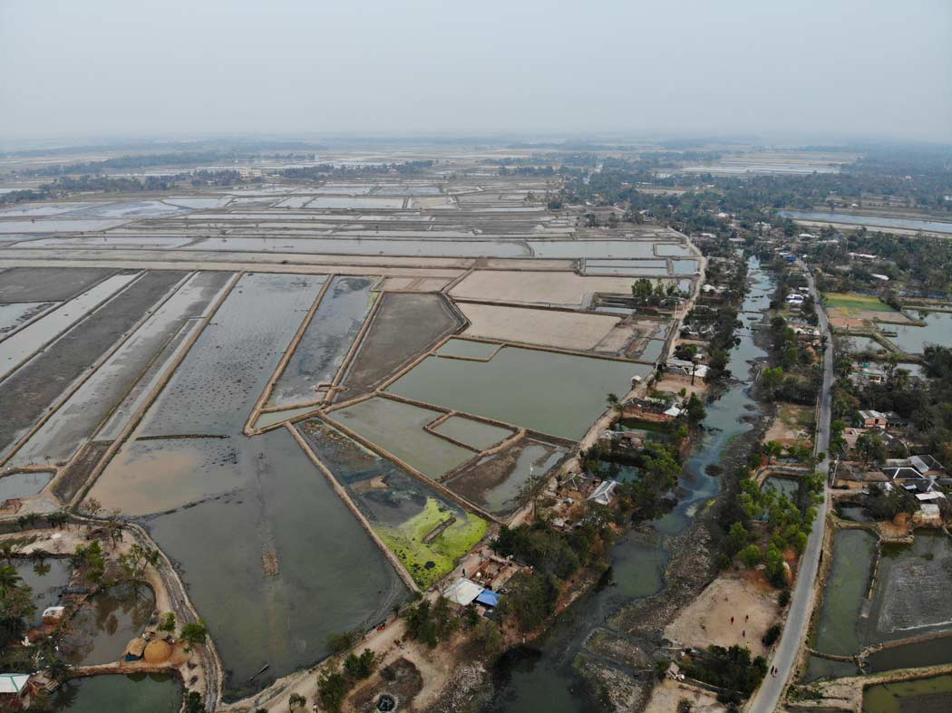 Durante la nostra esperienza di viaggio in Bangladesh siamo venuti a conoscenza del terribile disastro ecologico che colpisce le campagne. I terreni coltivati hanno dovuto cedere spazio agli allevamenti di gamberetti eliminando così il verde delle campagne.