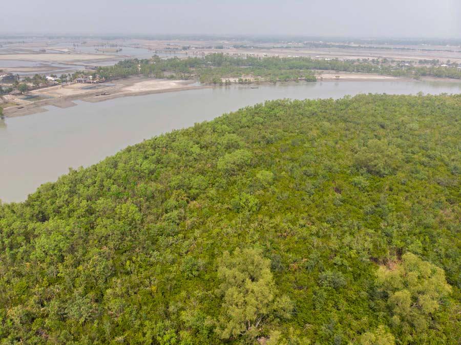 La foresta del Bengala vista dall'alto. In lontananza gli allevamenti di gamberi hanno sostituito per sempre il verde delle campagne.