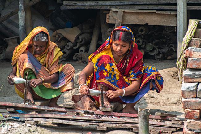 donne Munda intente alla pulizia del pesce pescato nei canali dell'estuario del Gange, dove sorge la maestosa foresta del Bengala