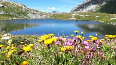 Lago Grande