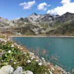 Il panoramico sentiero che dalla diga di Monte Spluga conduce in paese, ricco di fiori e animali al pascolo