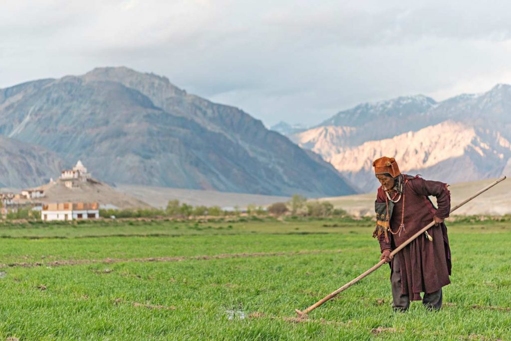 Un'anziana buddista con la tipica mala al collo durante il lavoro nei campi