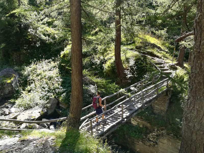 Uno dei bei ponti in legno sul sentiero del Cardinello